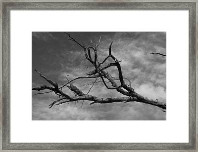 The Spectre Of Drought Framed Print