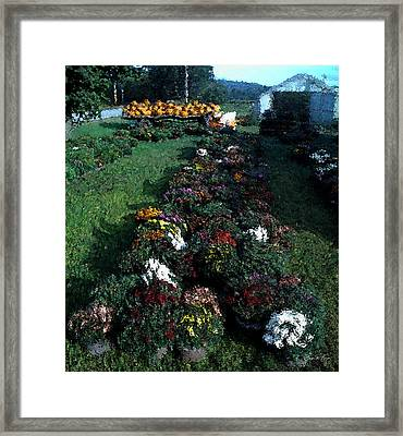 The Stand In Autumn Framed Print