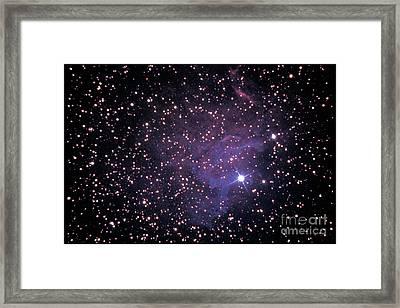 The Star Auriga Framed Print