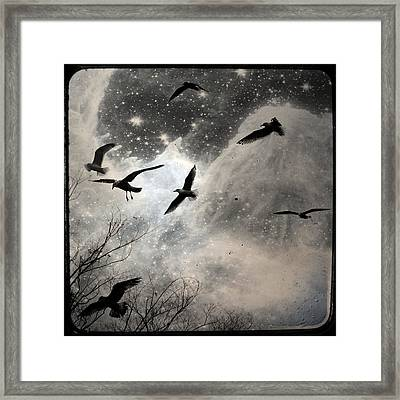 The Stars Birds And Clouds Framed Print by Gothicrow Images