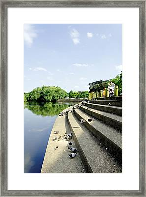 The Steps Of Derby River Gardens Framed Print by Rod Johnson