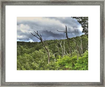 Framed Print featuring the photograph The Storm by Raymond Earley