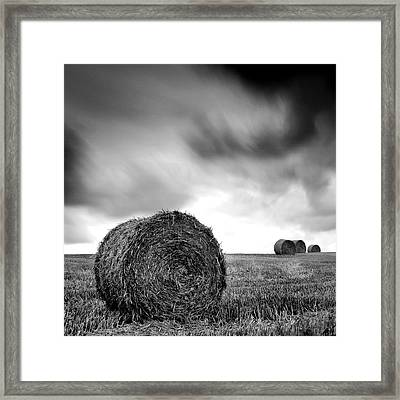 The Straw Framed Print