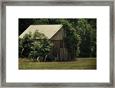 The Summer Barn Framed Print by Rebecca Sherman