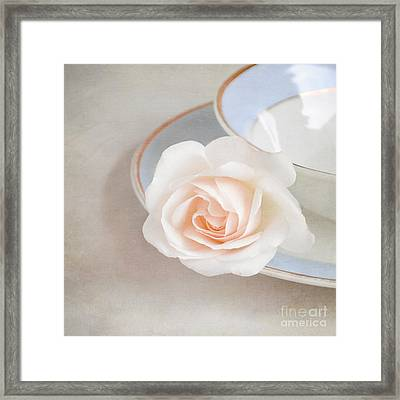 The Sweetest Rose Framed Print