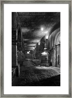 The Tequilera No. 2 Framed Print by Lynn Palmer
