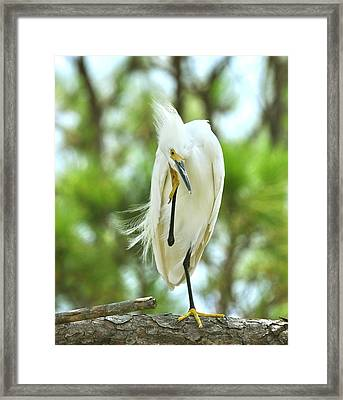 The Thinker Framed Print by Rick Frost