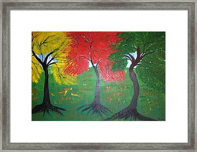 The Three Colours Of Maple Trees Framed Print by Pretchill Smith