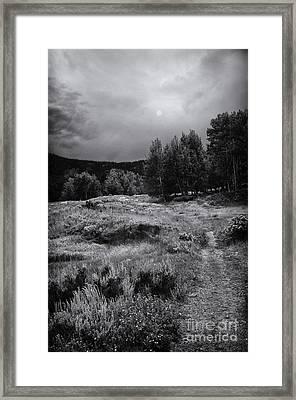 The Trail Framed Print by David Waldrop