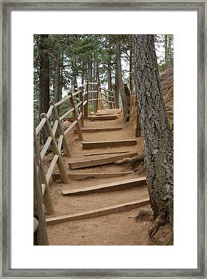 The Trail To The Top Framed Print by Ernie Echols