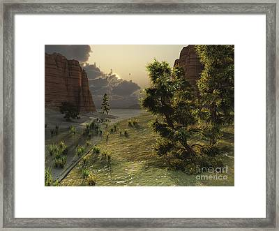 The Trees Are Kissed By Sunlight Framed Print by Corey Ford