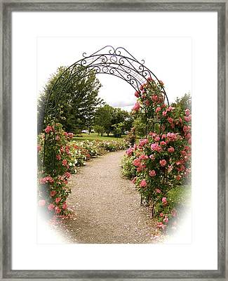 The Trellis Framed Print