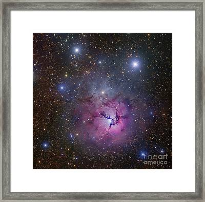 The Trifid Nebula Located Framed Print