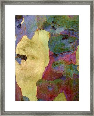 The True Colors Of A Tree Framed Print