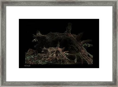 The Twist Of Nature Framed Print by Debra     Vatalaro