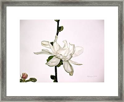 The Unfoldment Framed Print by Rotaunja