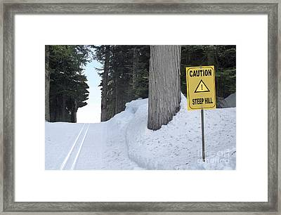 The Ups And Downs Of Life Framed Print