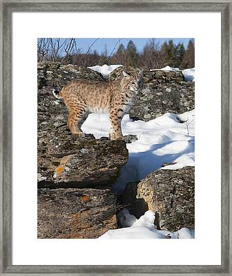 The Vantage Point Framed Print