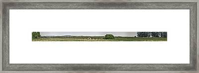 The Vineyard Framed Print by Nathaniel Kolby