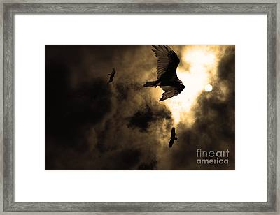The Vultures Have Gathered In My Dreams . Version 2 . Golden Framed Print by Wingsdomain Art and Photography