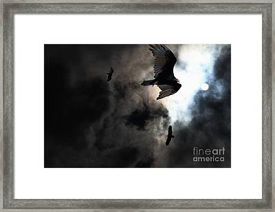 The Vultures Have Gathered In My Dreams . Version 2 Framed Print by Wingsdomain Art and Photography