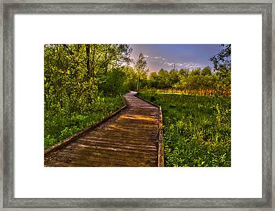The Walk Framed Print by Jason Naudi Photography