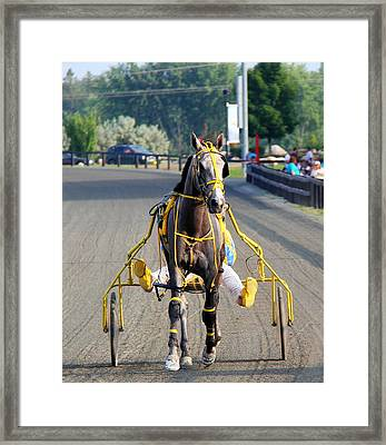 Framed Print featuring the photograph The Warm-up by Davandra Cribbie