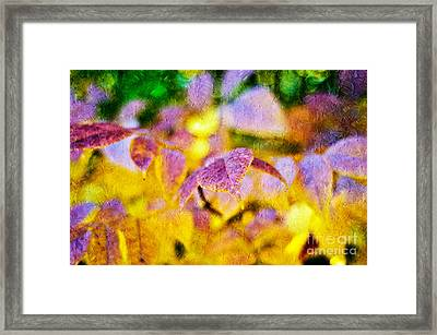 The Warmth Of Autumn Glow Abstract Framed Print by Andee Design