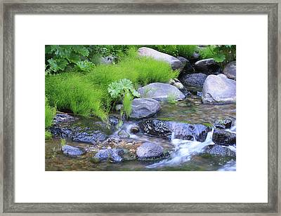The Waterfall Framed Print by Nance Eakins