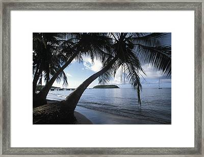 The Waterfront At Esperanza On Vieques Framed Print