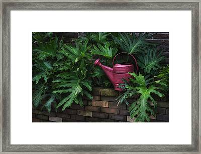 The Watering Can Framed Print by Brenda Bryant