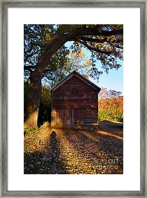 The Weathered Shed Framed Print by Sue Stefanowicz