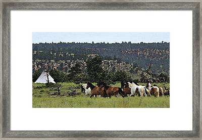 The Wild Mustangs In The Black Hills Framed Print