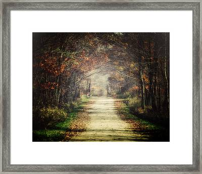 The Winding Road Framed Print by Lisa Russo
