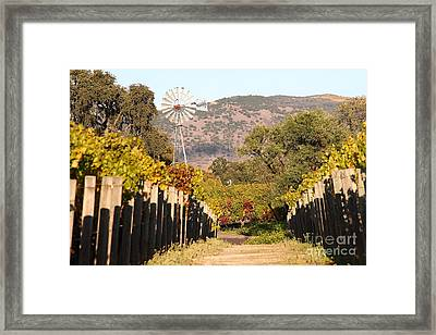 The Windmill At The Old Vineyard Framed Print by Wingsdomain Art and Photography
