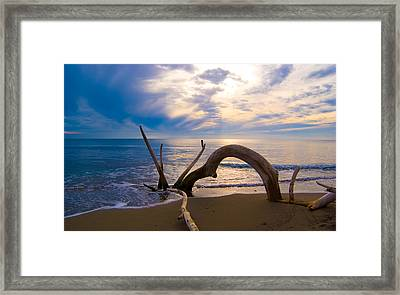 The Wooden Arch Framed Print by Marco Busoni