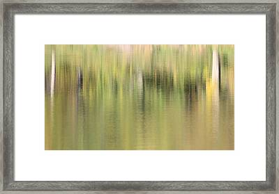 Framed Print featuring the photograph The Woods by Penny Meyers