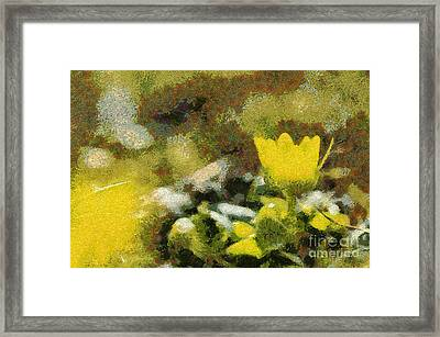 The Yellow Flower Framed Print