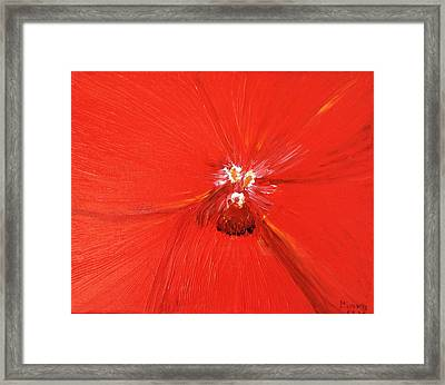 The Zoom Of Red Orchid Framed Print by Pretchill Smith