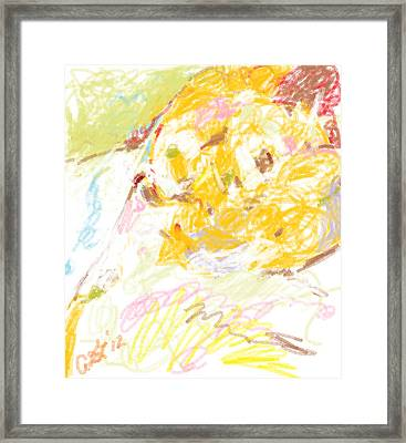 Theo And Minnow Sleeping Together Framed Print by Anita Dale Livaditis