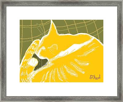 Theo Framed Print