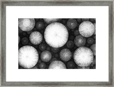 Theory Of The Universe Framed Print by Granger