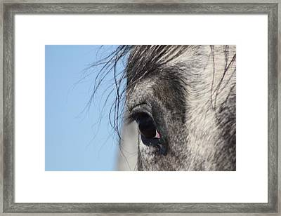 There's A Universe In That Eye Framed Print