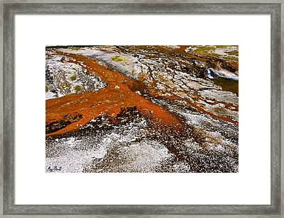 Thermal Impressionism Le Framed Print by Greg Norrell