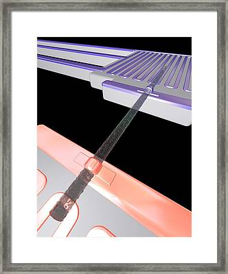 Thermoelectric Silicon Nanowire, Artwork Framed Print by Peidong Yanguc Berkeley