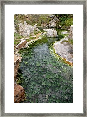 Framed Print featuring the photograph Thermopolis Hot Springs by Geraldine Alexander