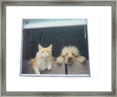 They Wait For Me... Framed Print