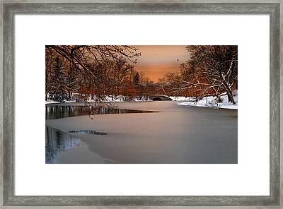 Thin Ice Framed Print by Robin-Lee Vieira