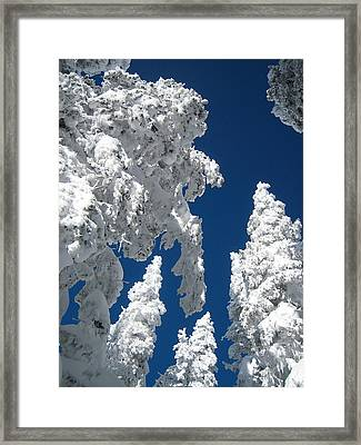 Things Are Looking Up Framed Print by George Crawford