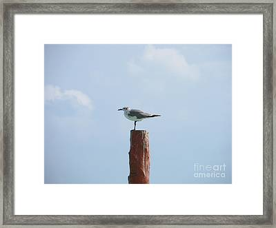 Think Framed Print by Jabbar Al Janabi